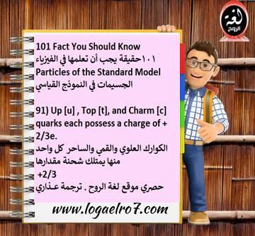 فيزياء الجسيمات 91
