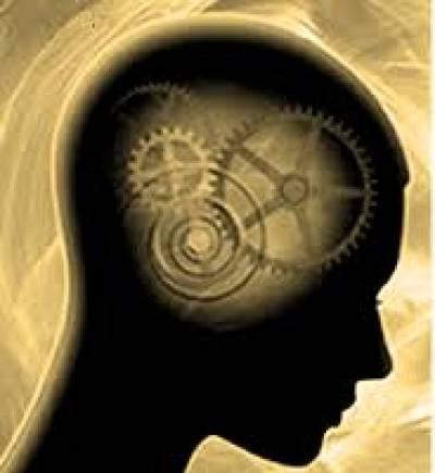 قصة العقل-  الجزء الأول -كل شيء في العقل