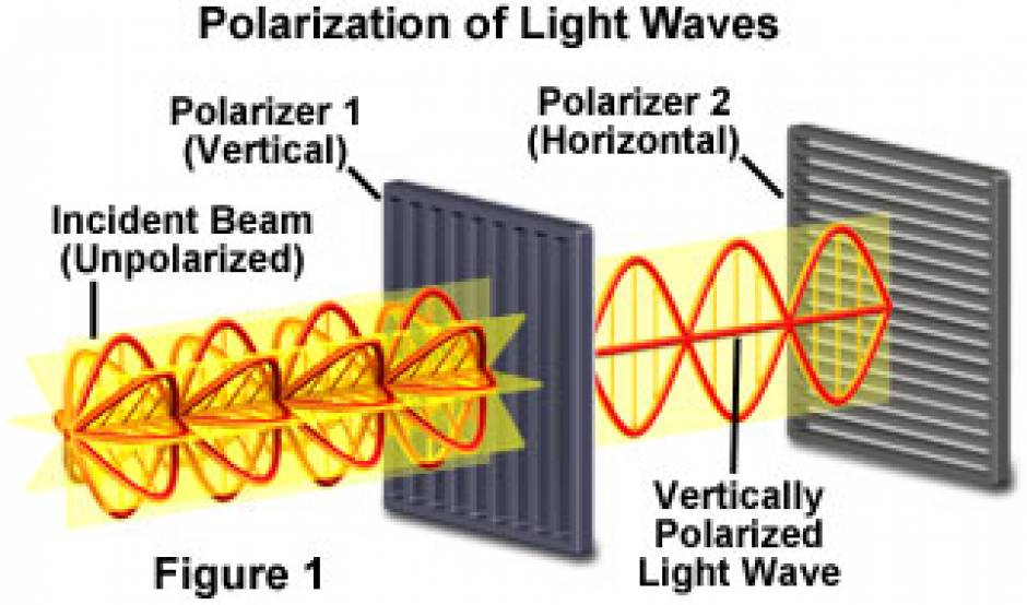 الاستقطاب Polarization